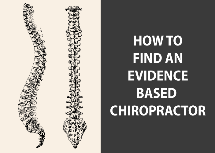how to find an evidence based chiropractor in holland